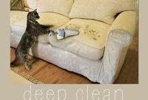 Clean / by Regina Catron