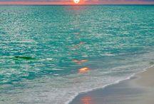 Summer Love / All Things Summer / by Susan Robbins Mauriello