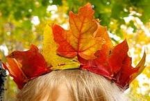Fall into Autumn / Celebrate Fall!