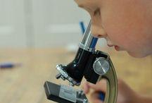 Scientific Fun / Fun ways for kids to explore science.