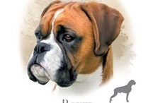 Boxers, so loving!! / by Nancy Floyd
