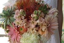 Weddings: M+J / Country Desert Chic ~ Peach, Pink and White