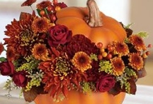 Thanksgiving, Fall Recipes & DYI Decorations / by Bonnie