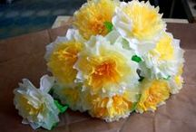 Coffee Filter, Cupcake Liners & Paper Ideas  & Flowers DYI / by Bonnie
