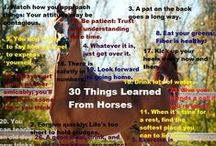 ☞ Horse Tips & Info ☜ / Everything you need to know about horses! Tips and advice for equestrians ~ articles, infographics, videos, books and more
