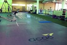 ACAC West Chester / by ACAC Fitness and Wellness Centers