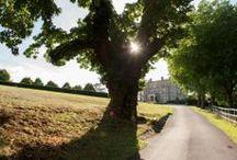 Hedsor House | Grounds / Beautiful images from around Hedsor House and the estate! Hedsor House - http://www.hedsor.com - Georgian Buckinghamshire Country House Wedding Venue near London