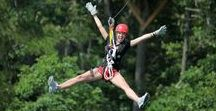 Canopy Tours & Hiking