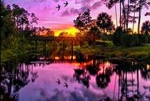 This Beautiful Planet / by Diatti Jewelry™