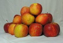 Fruta y Verdura Ecológica / Imágenes de la fruta y verdura ecológica que comercializamos a través de Ecobesa.es