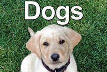 Dogs Unit Study Adventure