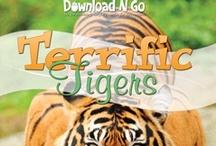 Terrific Tigers Unit Study / by Amanda Bennett Unit Studies
