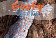 Goofy Gecko Unit Study