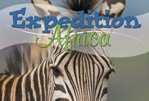 Expedition Africa / by Amanda Bennett Unit Studies