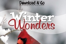 Winter Wonders / No longer is the coldest season just a winter wonderland—use Winter Wonders and warm up to an educational exploration! A Snowflake Bentley pop-up book, a winter birdwatching log, creative instructions for hot chocolate, and more will all end up in a memorable lapbook by the end of the week.