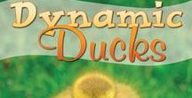 Dynamic Ducks / In the Dynamic Ducks unit study, your child will learn about the anatomy of ducks, from their webbed feet to the different types of feathers and why ducks preen their feathers. They will discover where the down in coats and pillows comes from, making the connection between ducks and people in many ways. There will be science discoveries, such as learning about the swimming and diving skills of ducks and the different kinds of ducks. Gr. K-4, 1-2 weeks to complete. Incl. lapbook.