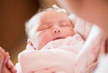 Babies! / by Jillian Bratcher photography