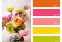 Inspiring color palettes