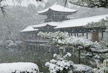 Nature Gardens Japanese Kyoto