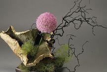 ▫️Art Japanese Ikebana