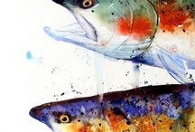 ▫️Art Watercolour V Animals