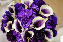Purple Bridal Bouquets / Stunning Purple Bridal Bouquets featured at Villa Siena ~ Arizona Weddings & Events. More Wedding Ideas www.facebook.com/villasiena