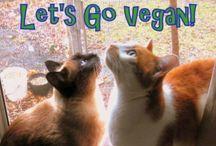Vegetarian/Vegan Attitude / « Rien ne saurait profiter à la santé humaine et favoriser la persistance de la vie sur terre autant que l'évolution vers le végétarisme. » Albert Einstein