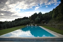 The swimming-pool set in an olive grove / After a long and intense day around Tuscany you may relax around our wonderful SWIMMING POOL reserved only for our guests and situated in a charming place surrounded by olive trees!