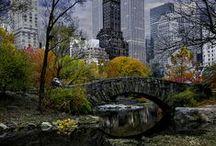 NY / by Teresa Turner
