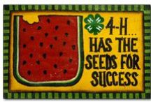{4-H Projects} / by Tiffany Gotschall