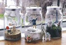 TERRARIUM  / by rin lucky13