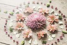 Creative Inspiration / by Jocelyn Baker