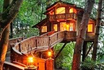 Tree Houses & tiny rustic houses in the woods