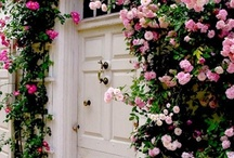 Archways, Entrances and Doorways that Inspire