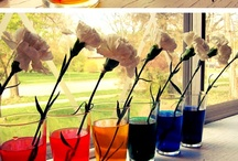 Sweet Spring Inspiration / Enjoy flowers, pastels, cut grass and outside sports as the weather gets warmer. We love Spring!