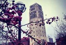 Michigan sights + scenes / Repins of University of Michigan scenes and sights from Pinterest and around the web.