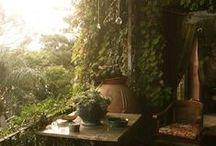 Balcony Garden / balcony decor & gardening tips