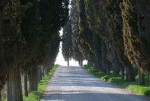 Travel: Umbria, Italy