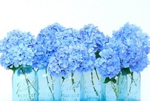 Blue / Surveys in the U.S. and Europe show that blue is the colour most commonly associated with harmony, faithfulness, confidence, distance, infinity, the imagination, cold, and sometimes with sadness. / by retrogoddesses.com