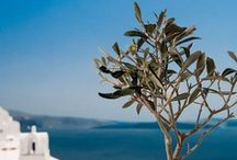 Hellas - Home country / Beautiful Greece | Bella Grecia | Grecia hermosa  / by Eleni Garifalaki