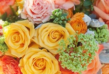 Citrus Wedding Trends / by Liz WeddingMarketingDiva