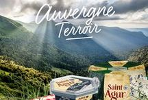 Auvergne Terroir - Saint Agur® Cheeses by Ile de France® / St. Agur (pronounced Sant ah-GOOR), easily recognizable by its octagonal shape, is made from pasteurized cow's milk in the village of Monts du Velay.  It contains 60% butter cream, thus qualifying it also as a double-cream cheese. In other words, every bite is sinful. Mild in flavor and not too salty in comparison to other blues, St. Agur appeals to many palates. Put a thin slice in your salad or burger or spread it on fresh baguette. It also melts quickly in sauces.
