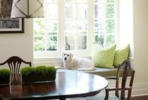 Dogs and Beautiful Interiors / by It's a Lab Thing