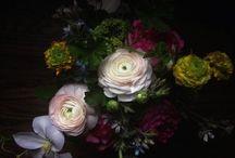 Fleur: Art Prints We Sell / by Fleur