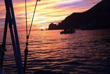 Cabo San Lucas Resorts / Resorts, beaches, food, and fun in Cabo San Lucas and San Jose Del Cabo  / by Travel by Lori