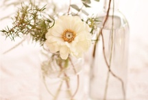 Wedding Ideas & Inspiration / Palm Beach Florida wedding photographer Hannah Mayo. Board of wedding planning and photography inspiration.