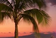 Puerto Vallarta and Vallarta Nayarit / Set on Mexico's Pacific Coast. Green lush jungle mountains are the backdrop to meeting the gorgeous Pacific Ocean / by Travel by Lori