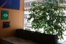 KEETSA indoor Garden project (@SF)