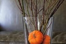 Halloween/Fall / by Lisa Quade