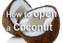 How to open a Coconut / Think creatively when trying to open a coconut.  / by Dang Foods